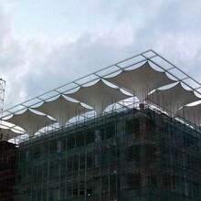 浙江膜結構商業設施銷售圖片