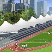 杭州膜結構體育設施銷售圖片