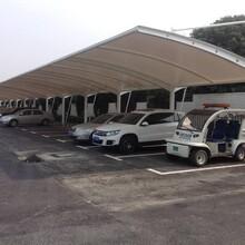 上海膜结构停车棚图片