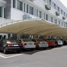 杭州膜結構停車棚價格圖片