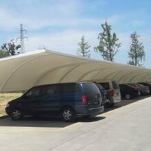 紹興小區膜結構停車棚設計圖片