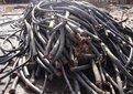自貢電線電纜回收多少錢圖片