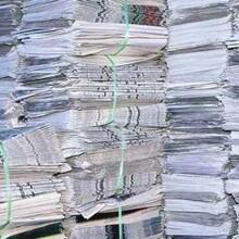 自流井废纸回收图片
