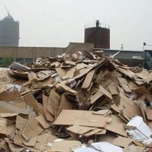 大安哪里有废纸回收图片