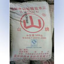 供应广汉快干水泥厂家30分钟初凝图片