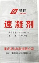 重庆铜梁隧道速凝剂厂家直供量大从优图片