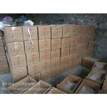 达县水泥锚固剂重庆发货速凝剂价格图片