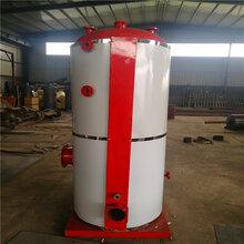 我公司常年供應立式蒸汽鍋爐多種燃料均可燃燒熱效率高蔬菜殺青環保天然氣蒸汽鍋爐