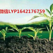 浙江杭州桐廬安利產品專賣店鋪買安利產品