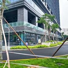 福永村委统建楼价格图片