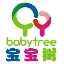 宝宝树广告怎么收费;联系电话是多少?图片