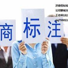 济南市商标注册成功后,七大问题不容忽视!图片