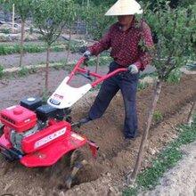 农用开沟犁地机玉米播种锄草施肥机耘耕机价格