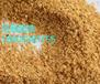 廠家直供蛋白飼料添加劑菌體蛋白肽