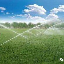 文洛型温室农业自动化物联网控制系统