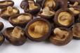 香菇脆果蔬脆生產廠家支持散裝批發oem代加工私人定制