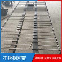 生产传动网链泡沫清洗输送机网链耐高温304不锈钢金属材质图片