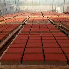 达州彩砖用红颜料,彩砖专用颜料,铁红颜料,氧化铁红生产厂家图片