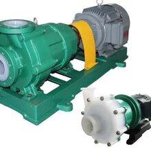 化工泵CQB-F衬氟磁力泵离心泵耐腐蚀耐磨耐酸碱