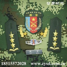 學生軍訓教官常服臂章領花軟肩章硬肩章硬胸章軟胸標圖片