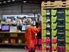 甘肅酒泉出國勞務新西蘭奶粉廠包裝工貨運司機包食宿月薪3萬