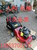 轻便小型汽油割草机草坪手推式割草机手推式21寸割草机