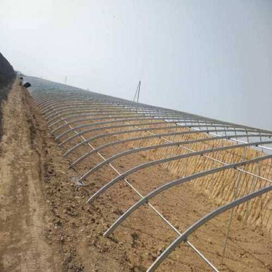 农业专用温室大棚薄膜大棚蔬菜大棚养殖大棚