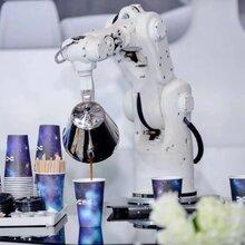 宁波讲解机器人出租导购机器人租赁主持机器人图片