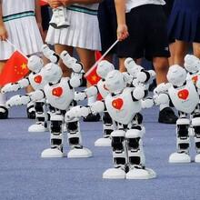 广州书法机器人租赁倒酒机械臂出租跳舞机器人商演阿尔法机器人图片