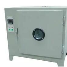 Y101A-1型系列电热鼓风烘箱图片