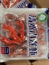 北京清水凍蝦批發大量供應圖片