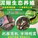 泥鳅养殖加盟