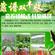 农村养殖泥鳅技术