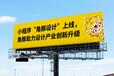 北京市的價格便宜《角豚作品》