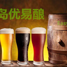 日产300-1000L精酿啤酒设备全自动化一键操作纯麦芽酿酒图片