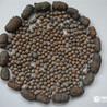 陶粒煅燒回轉窯