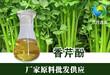 江西鑫森供应香芹酚植物提取香料