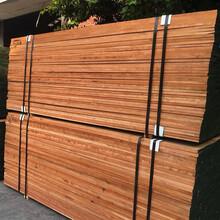 美国樱桃木,实木家具板材,进口北美樱桃木图片