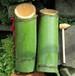 北京52度客家竹酒鮮竹包裝口感醇厚拿貨價格