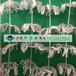 唐山供應優質環保型組合式填料維綸醛化絲組合式填料生產廠家