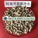 鎮江活性污泥菌種粉劑生化廢水處理用菌種廠家批發價