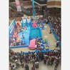 大型海洋动物海狮企鹅海豚表演租赁展览电话