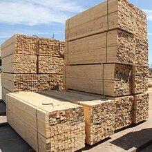 常州木條生產廠家