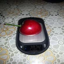 安徽品质优美国大红樱桃苗生产厂家图片