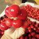 嘉興黃蜜櫻桃苗、黃蜜櫻桃苗供應商