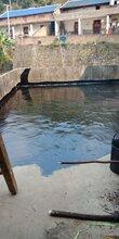 寮步屋面防水施工