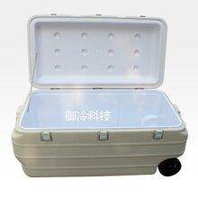 武汉厂家直销GSP冷藏箱NY-B170L图片