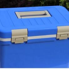 廠家現貨熱銷冷藏保鮮用冷藏箱保溫箱12L28L圖片