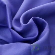 色织布全涤布斜纹风格21SX21S108X58服装面料布图片