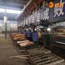 兴庆区九层建筑模板厂家电话图片